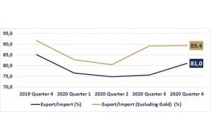 Developments in Turkey's External Merchandise Trade in 2020